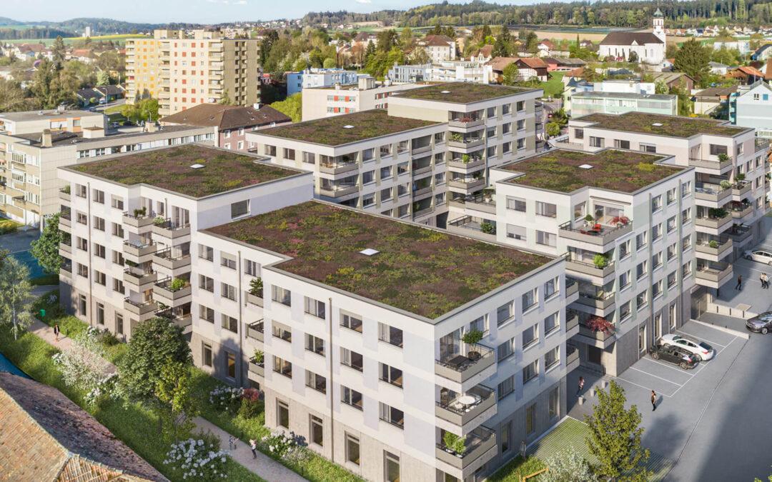 Neubauprojekt Dorfhof
