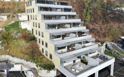 Neubauprojekt Obernau 86