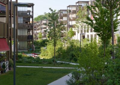 ABZ Siedlung Entlisberg emonitor 4